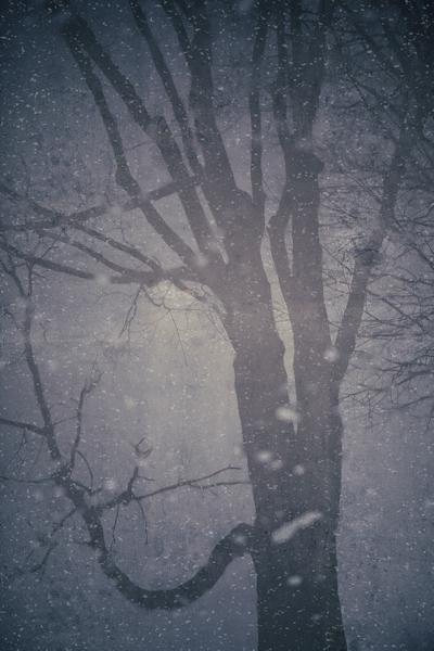 Snowpuddle